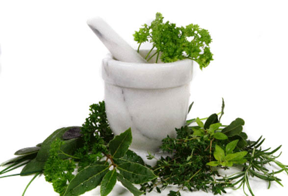 Plants-with-cosmetic-benefits